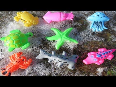 Sea Animal Toys Frozen And Unfrozen (Playtime4Kidz)