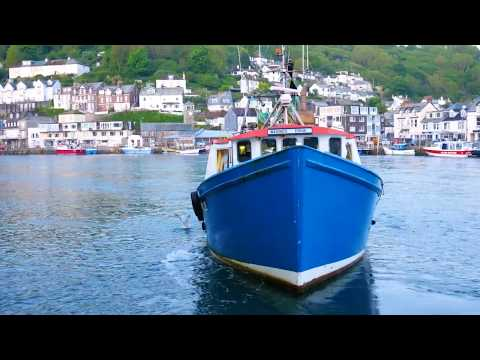 Looe Fish Market, Cornwall | Fish For Thought TV