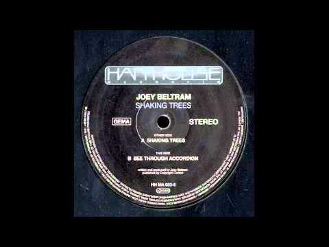 Joey Beltram - Shaking Trees   Harthouse