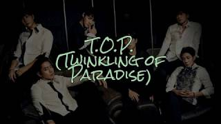 Shinhwa - T.O.P. (Twinkling of Paradise) (1999) 神話 - T.O.P. …