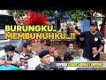 Cendet Makin Menggeliat Kopdar Cendet Mania Lampung  Mp3 - Mp4 Download