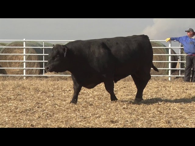 Express Ranches Lot 271