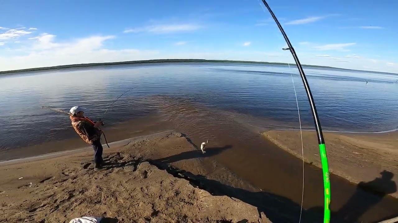 Окунь Щука мы на рыбалке,Окунёвый котёл.Часть 2.