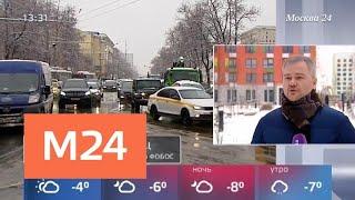 Температура воздуха в столичном регионе вернулась к норме - Москва 24