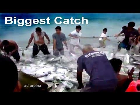 Biggest Catch ''Talakitok Fish'' Philippines