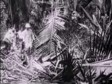 Trip through British North Borneo (Sabah) in 1906