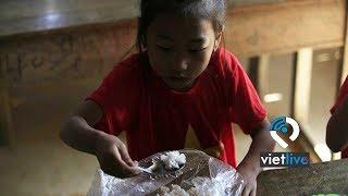Nhiều học sinh ở ngôi trường sắp sập vẫn ăn 'cơm không', đi chân trần trong giá rét