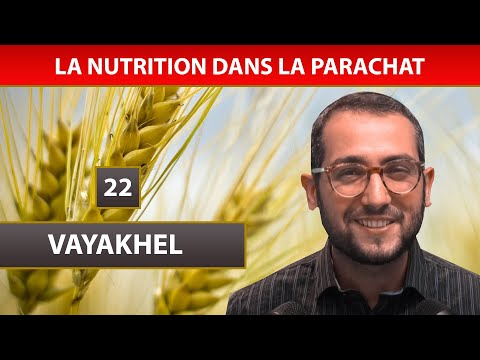 NUTRITION DANS LA PARACHAT 14 - VAYAKHEL 22 - Shalom Fitoussi