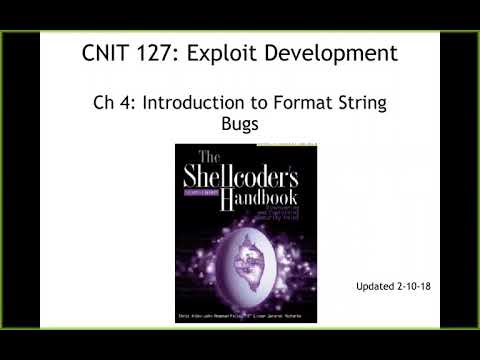 CNIT 127 Ch 4: Introduction to format string bugs