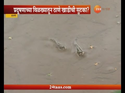 Thane Creek Free From Water Pollution