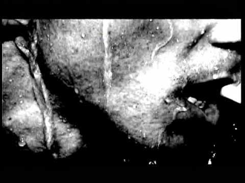 Kudret Kurtcebe - Şöhret