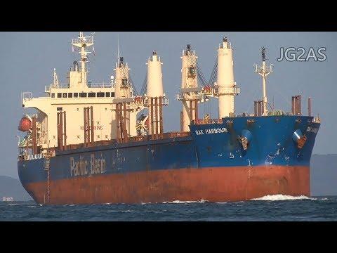 OAK HARBOUR バラ積み船 Bulk carrier Pacific Basin 2017-OCT