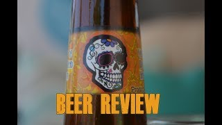 Day of The Dead Blonde Ale Beer Review - guitar cover - Phillip Phillips Home - Bloopers
