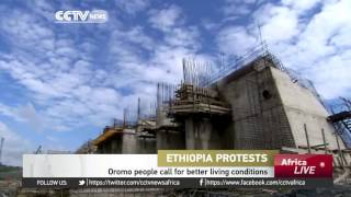 CCTV: Egypt Denies Involvement In Ethiopia's Conflict