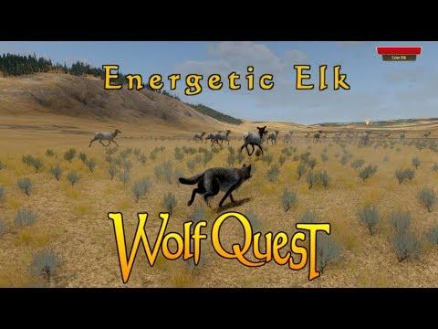 Energetic Elk