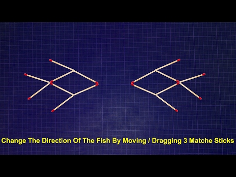 Amazing Matches Tricks || Change The Direction Of The Fish || You Can Do This
