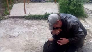 В Симферополе полицейские нашли и вернули хозяину похищенную у него собаку