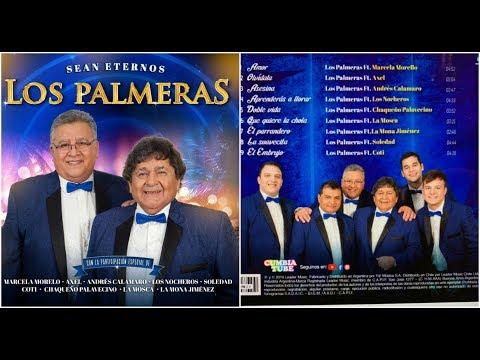 Los Palmeras Ft. Los Nocheros / Aprenderas A Llorar / 2019