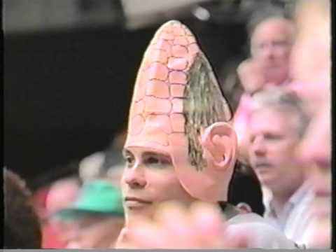 1994 NCAA Men's Gymnastics Team Finals, Nebraska vs Stanford vs Ohio State