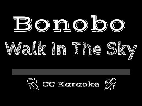 Bonobo   Walk In The Sky CC Karaoke Instrumental