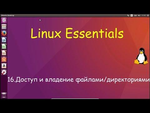 16.Linux для Начинающих - Права Доступа и владения файлами и директориями