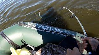 КЛЕВ СОМА НА КВОК рыбалка на сома ловля сома на квок рыбалка 2021