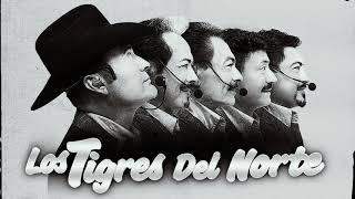Los Tigres Del Norte  Puros Corridos Pesados pa pistear  20 Grande Exitos