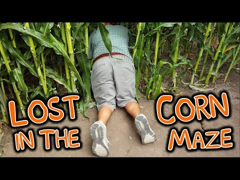 Best Pumpkin Patch & Corn Maze - Picking Halloween Pumpkins