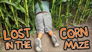 Halloween Pumpkin Picking & Corn Maze Adventure