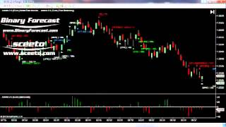 Forex Euro USD 6E Futures Ninja Trader Daily Report 29th Aug 2012 Futures