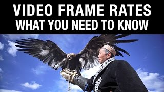 Video Frame Rates: What You Need to Know