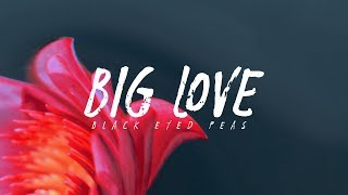 Black Eyed Peas Big Love