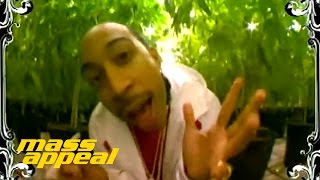"Ludacris ""Blueberry Yum Yum"""