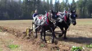 Horse Drawn Two Way Plow