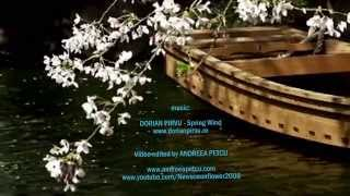 ♡ Spring Wind - Dorian Pirvu ( soothing, relaxing music)