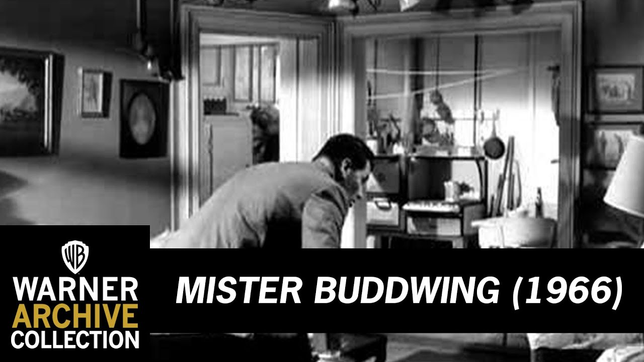 Download Preview Clip   Mister Buddwing   Warner Archive