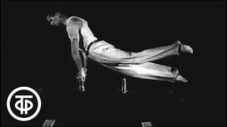 Наш семейный альбом - гимнастика. История гимнастики (1966)