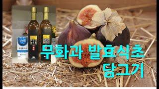 무화과발효식초- 유인균, 유원플러스발효
