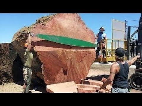 Фото пизда ира дрова фото 29-55
