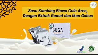 BUGA Gold Susu Kambing Etawa Gula Aren dengan Ekstrak Gamat Ikan Gabus dan Collagen