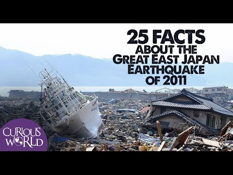 25 Facts About the Japan Earthquake and Tsunami of 2011