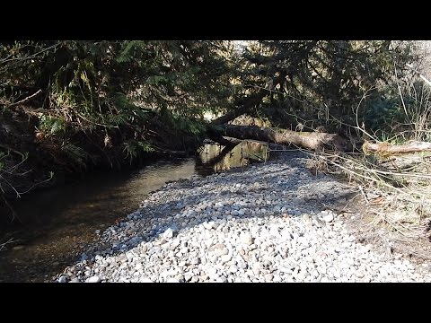 S3E6 Washington State Gold Mining Prospecting Creek #1 wth Pete