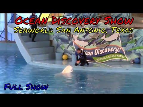 Ocean Discovery Show at Seaworld San Antonio Texas