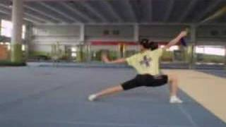 Henan Wushu Team Training May 2008