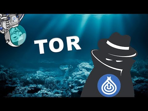 DeepOnion: Is TOR Traceable?