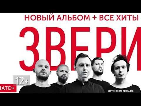 """Концерт группы """"Звери"""". Выступления исполнителя Нигатив. Афиша Ярославля с 19.11.18"""