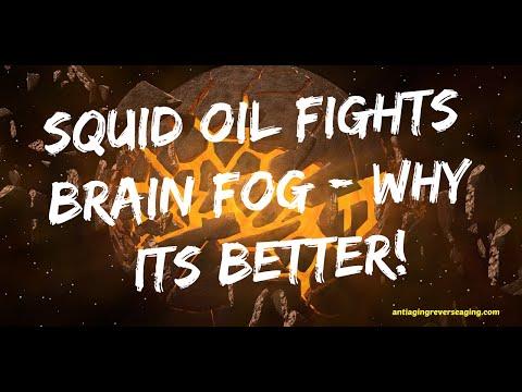 Squid Oil Fights Brain Fog - Why It's Better