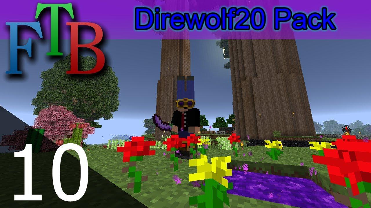 Ftb direwolf20 server