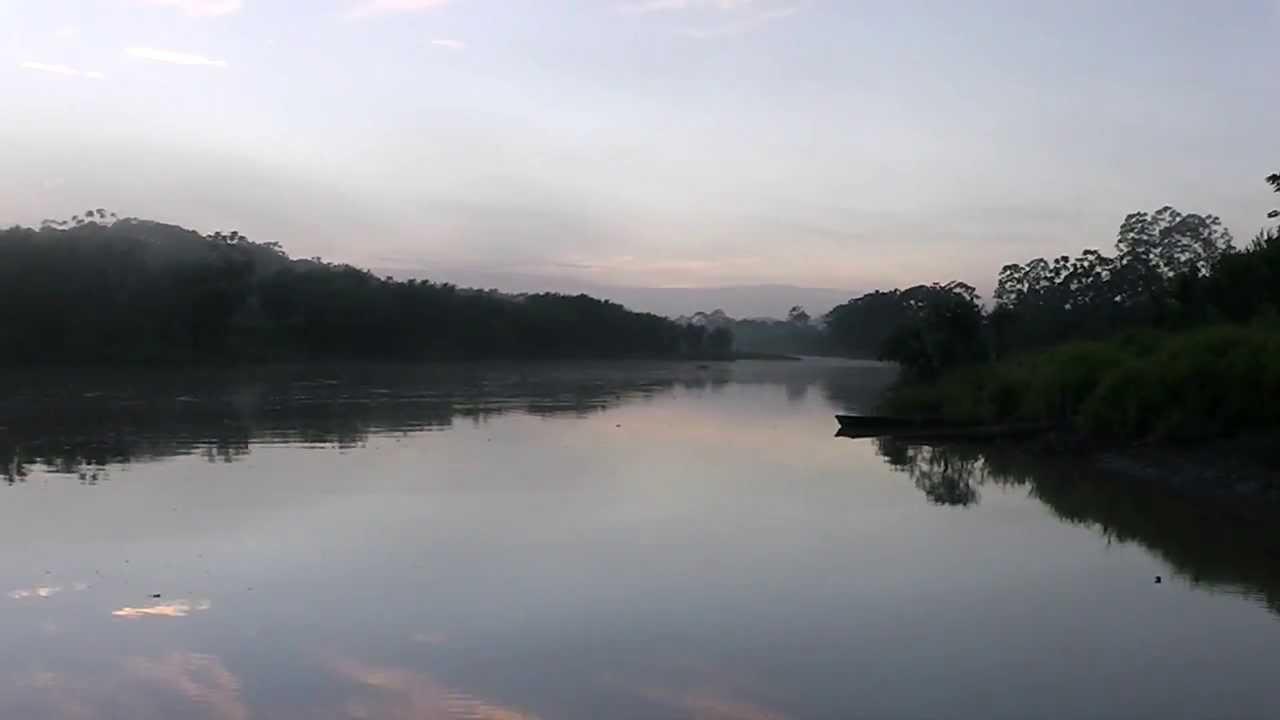 Ucayali River Reflections - YouTube Ucayali River