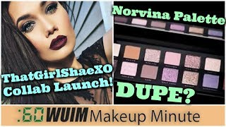 ThatGirlShaeXO Collab Launch! Is this a Norvina Palette DUPE? | Makeup Minute